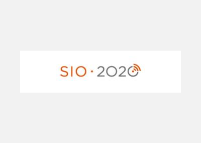 SIO 2020 – program nadaljnje vzpostavitve IKT v VIZ